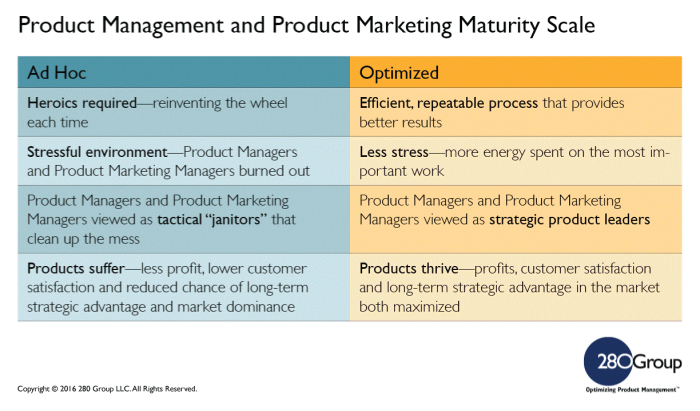 Product-management-model